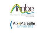 UNIVERSITE D'AIX MARSEILLE