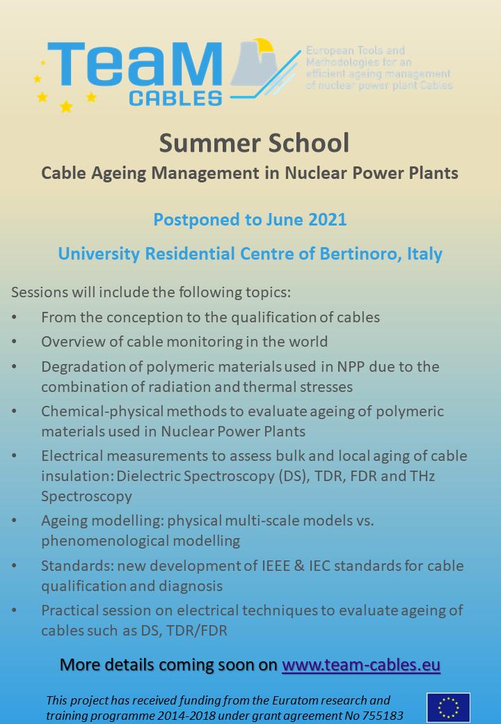TeaM Cables Summer School flyer