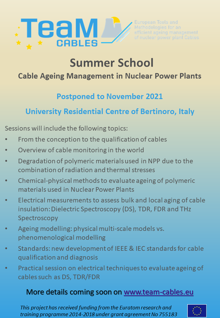 TeaM Cables Summer School flyer